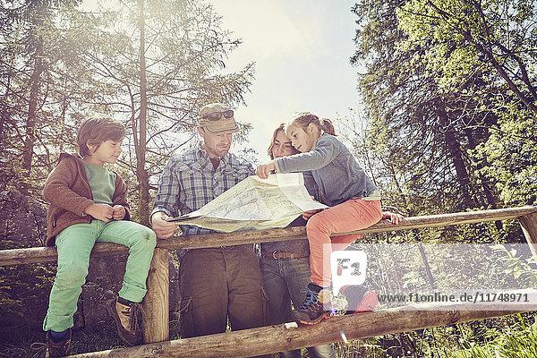 Familie im Wald  Blick auf Karte  Blick aus niedrigem Winkel