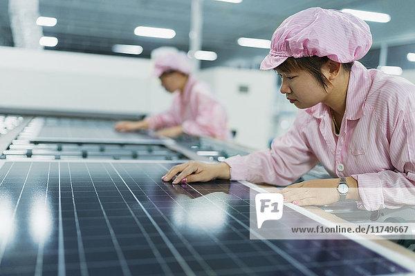 Arbeitnehmerinnen in einer Fabrik zur Montage von Solarpaneelen  Solar Valley  Dezhou  China