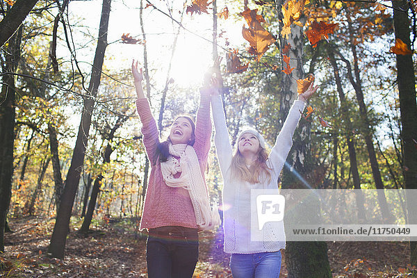 Teenage girls in forest arms raised throwing autumn leaves  looking up smiling