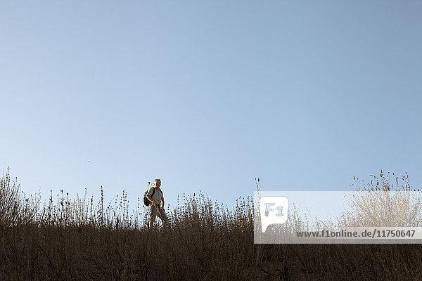 Erwachsener Mann wandert in Hügeln und langem Gras