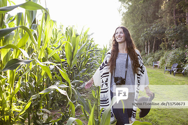 Young female photographer strolling in field touching corn plants