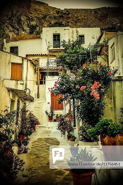 Plaka district in Athens  Greece  Europe.
