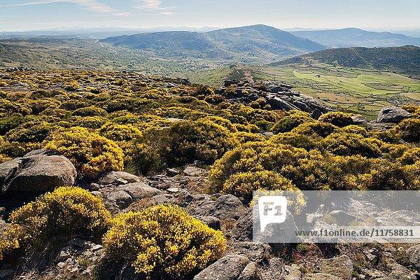 Lanchal in the Sierra de la Paramera. Avila. Castilla Leon. Spain. Europe.
