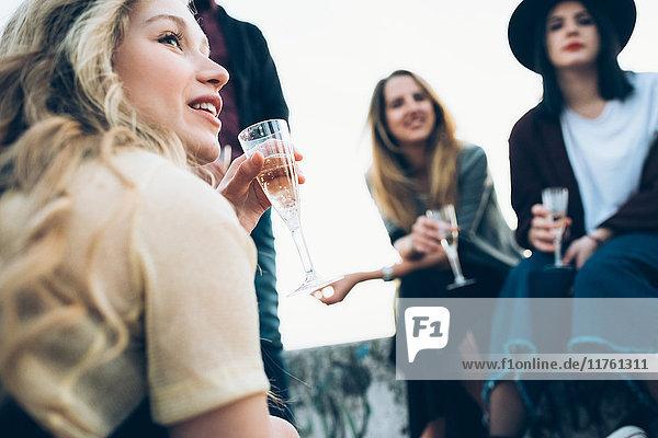 Gruppe von Freunden im Freien  Champagnergläser haltend  niedriger Blickwinkel
