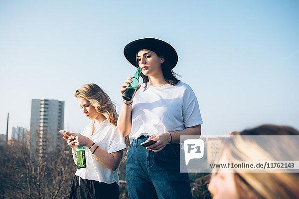Gruppe von Freunden trinkt gemeinsam im Dachgarten