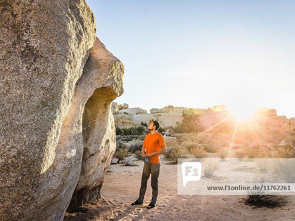 Male boulderer looking up at boulder in Joshua Tree National Park at dusk  California  USA
