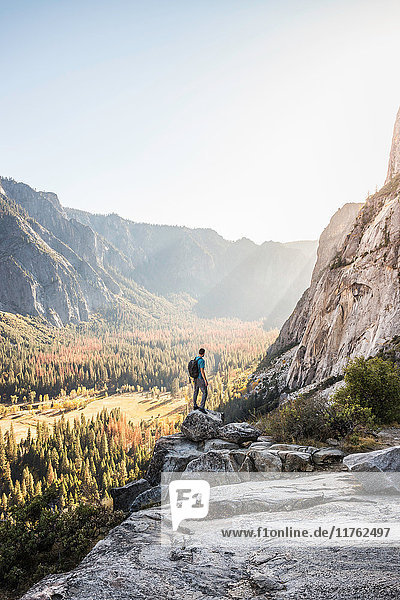 Man on boulder looking out at valley forest  Yosemite National Park  California  USA