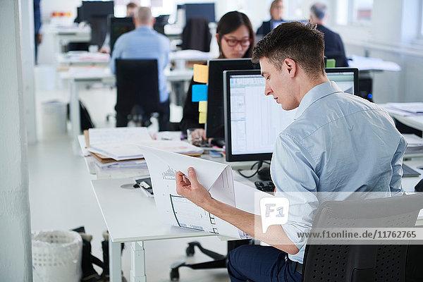 Kollegen  die im Büro arbeiten und Computer benutzen
