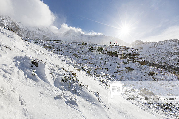 Hikers proceed in the snowy valley of Alpe Fora  Malenco Valley  Province of Sondrio  Valtellina  Lombardy  Italy  Europe