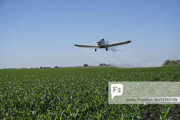 Large scale agriculture and crop spraying  Mexico  North America