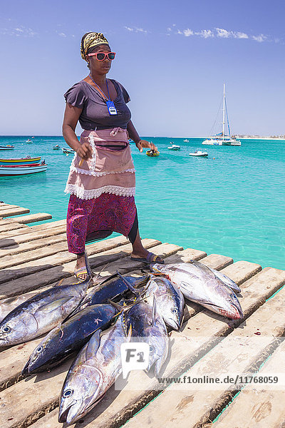 Colourful local woman selling freshly caught yellow fin tuna fish from the pier at Santa Maria  Sal island  Cape Verde  Africa