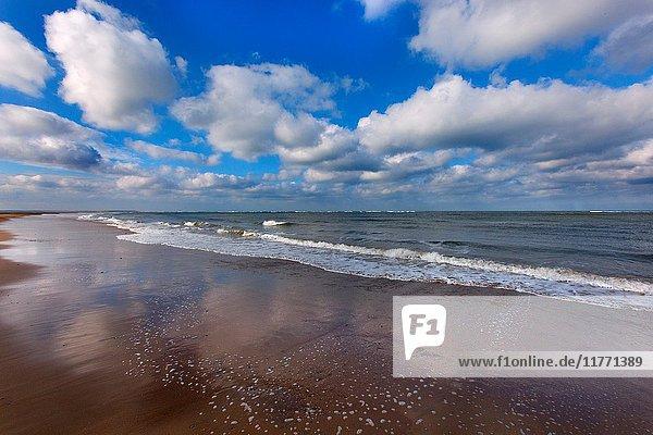 Low Tide Blakeney Point Norfolk UK Winter.