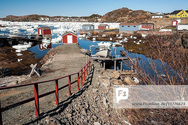 Colorful Fishing Stages and buildings in Durrell  Twillingate  Newfoundland  Canada.