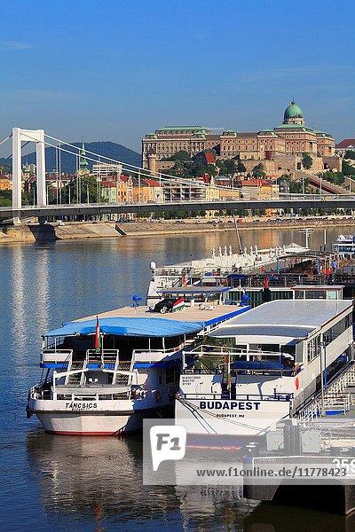 Hungary  Budapest  Royal Palace  Elisabeth Bridge  Danube River  ships .