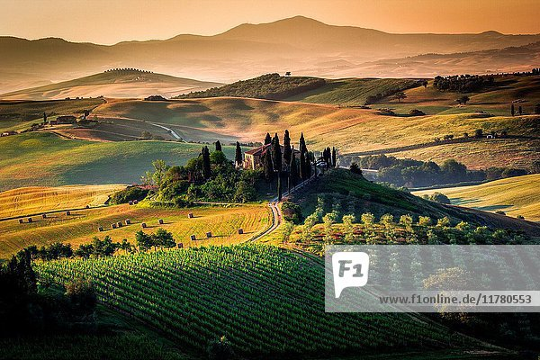 Val d'Orcia  Tuscany  Italy. Amazing sunrise over the green and golden hills of the Tuscan landscape.