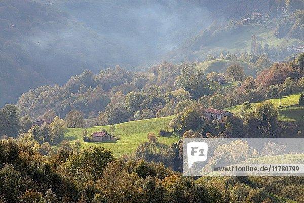 Marmentino  Trompia valley  Brescia province  Lombardy  Italy. Woodland around Marmentino in autumn.