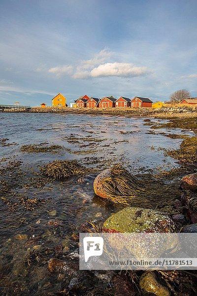 The colors of dawn light up the houses of fishermen Flatanger Trøndelag Norway Europe.