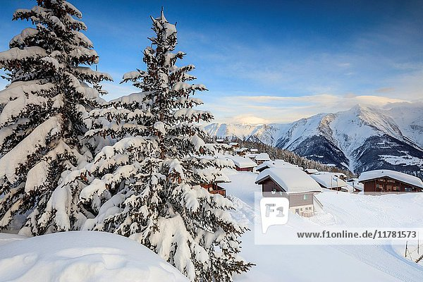 Sunset frames the mountain huts and woods covered with snow Bettmeralp district of Raron canton of Valais Switzerland Europe.