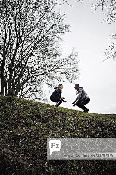 Niederwinkel-Ansicht eines multiethnischen Paares beim Springen auf dem Hügel