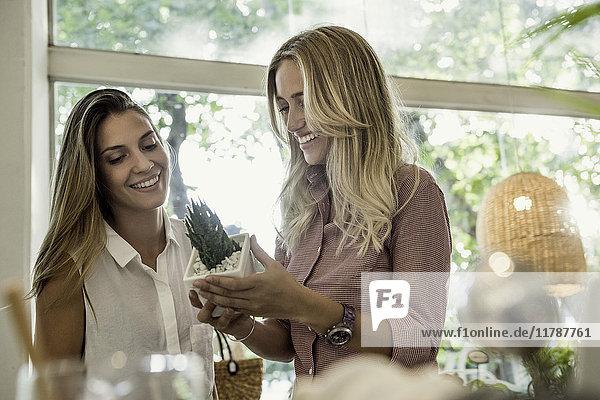 Frauen beim gemeinsamen Einkaufen im Geschäft