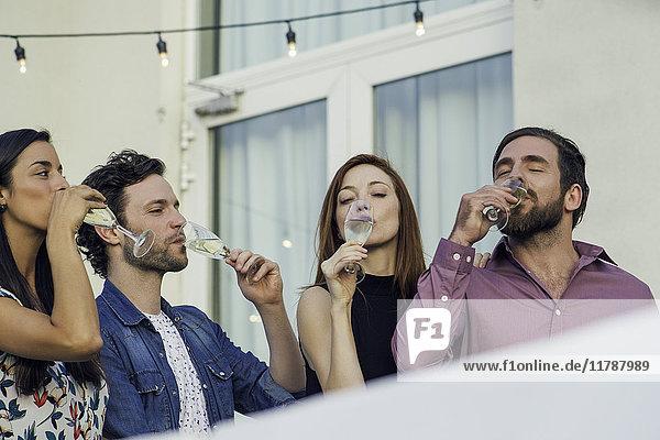 Freunde trinken gemeinsam Wein im Freien