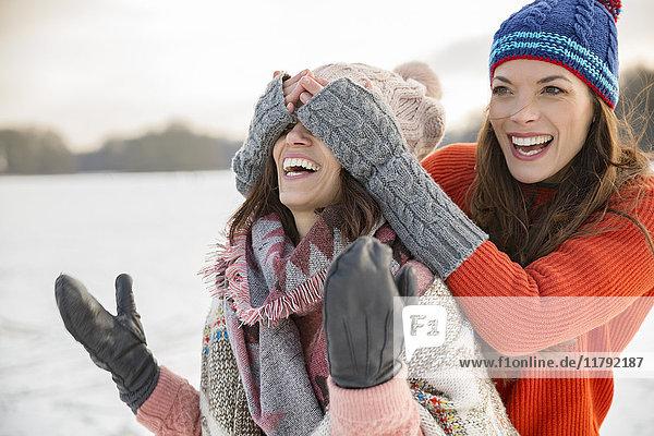 Verspielte Freunde auf dem zugefrorenen See