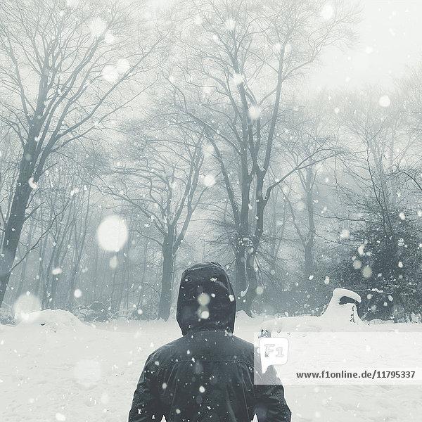 Rear view of man in winter landscape