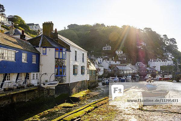 UK  England  Cornwall  Polperro  Fischereihafen bei Ebbe im Morgenlicht