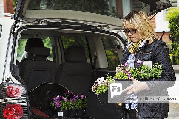 Woman wearing sunglasses standing at back of estate car with open hatch  holding plastic flower pots.
