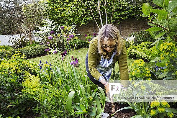 Frau  die in einem Garten steht  eine Gartenkelle in der Hand hält und zwischen Blumen in einem Blumenbeet gräbt.