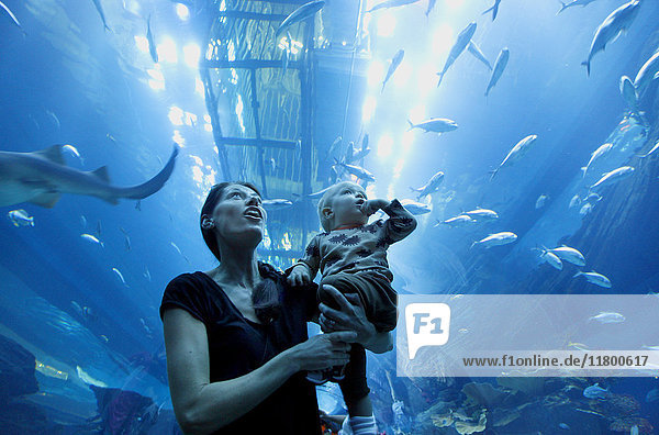 Mother with toddler son in aquarium