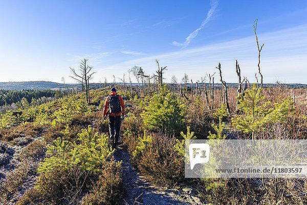 Hiker walking on footpath