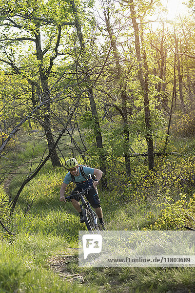Mature man riding mountain bike through forest