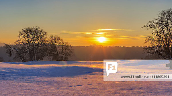 Scenic view of sunset and snow field