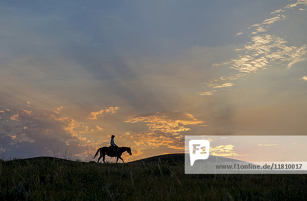 Silhouette of Caucasian woman riding horse at sunset