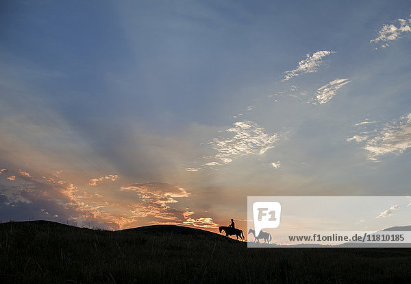 Silhouette of Caucasian couple riding horses at sunset