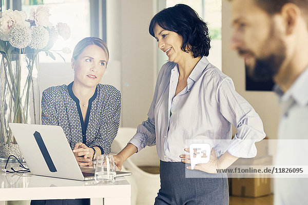 Two businesswomen looking at laptop in stylish office