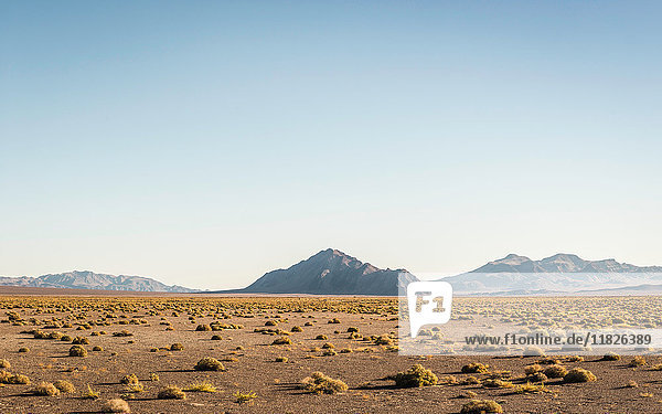 Landscape with rock formation in Death Valley National Park  California  USA