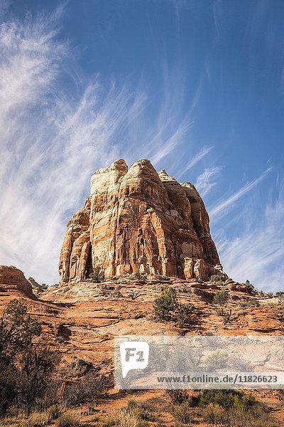 Rockgruppe  Escalante  Utah  USA