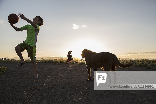 USA  Colorado  Boy (8-9) playing ball next to chocolate Labrador and little girl (4-5) running in background