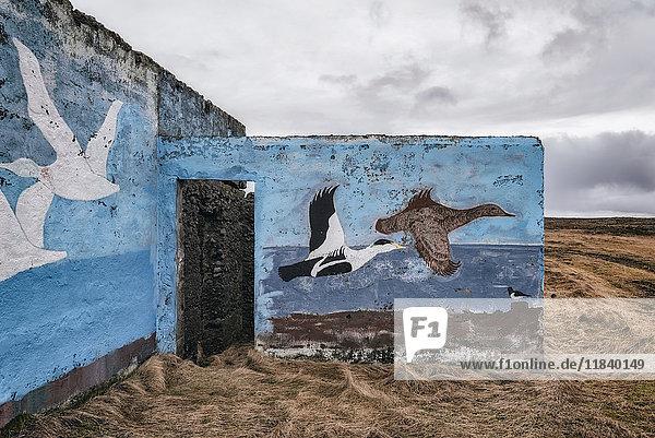 Mural of flying ducks on walls