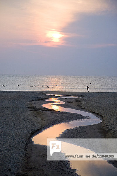 Man walking on beach near water channel at sunset