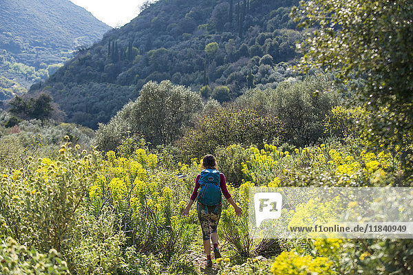 A woman hiking a trail full of abundant wild flowers on the Mani Peninsula in the Peloponnese  Greece  Europe