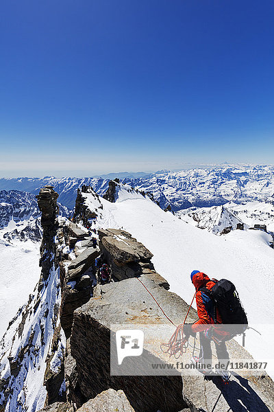 Climbers on Madonna summit 4059m  Grand Paradiso  Aosta Valley  Italian Alps  Italy  Europe