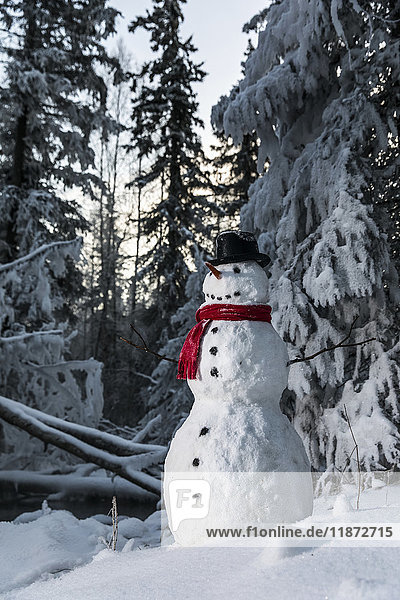 Snowman along hoarfrost covered forest at sunset  Anchorage  Southcentral Alaska  USA
