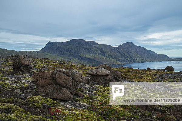'The dramatic landscape of the Strandir Coast; Djupavik  Westfjords  Iceland'