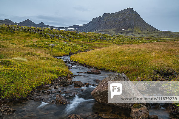 'A small unnamed stream flows out from the mountains along the Strandir Coast; Westfjords  Iceland'