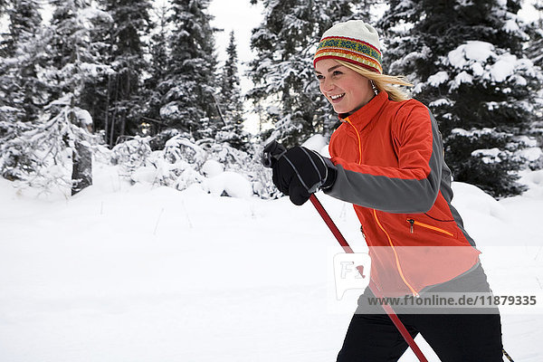 'A young woman cross country skiing  Ohlson Mountain; Alaska  United States of America'