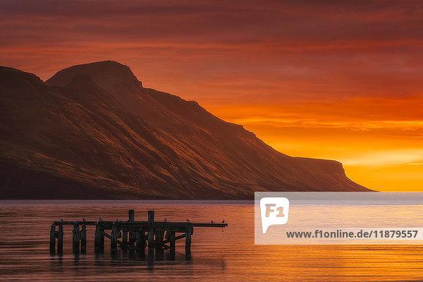 'Sunrise over the waters near Djupavik  Strandir Coast; West Fjords  Iceland'