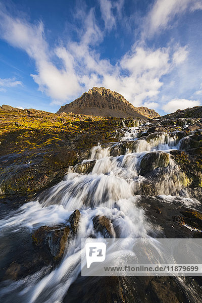 'A small stream flowing out from the mountains along the Strandir Coast; West Fjords  Iceland'